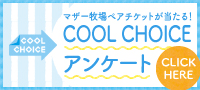 COOL CHOICEアンケート